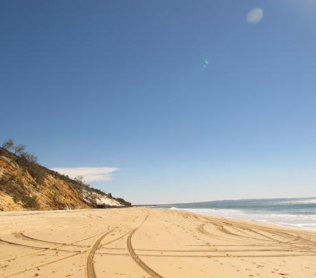 Sprachreisen Sunshine Coast