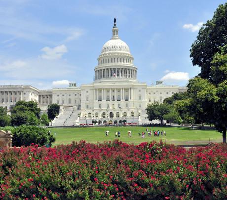 Sprachreisen Washington