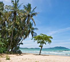 Sprachreisen Playa Tamarindo
