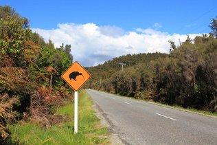 Schüler-Sprachreisen Neuseeland